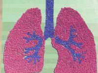 LungCareFoundation-LungImage